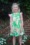 Katelyn Dress - Field Day